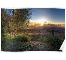 Tamborine • Queensland • Australia Poster