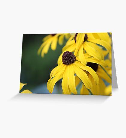 Spring Greeting Card