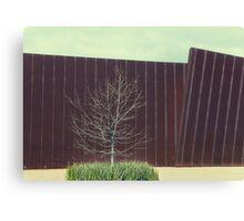the urban tree.... Canvas Print