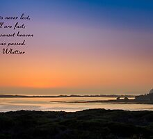 Elfin Sunset by Rose Spagnola