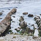 Tidal rocks in Lulworth Cove, Dorset by PaulMcGuinness