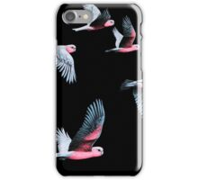 Night Flight iPhone Case/Skin