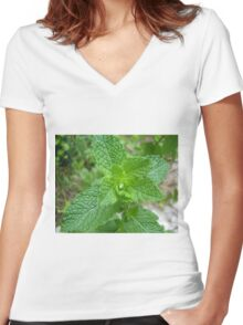 Minted Women's Fitted V-Neck T-Shirt