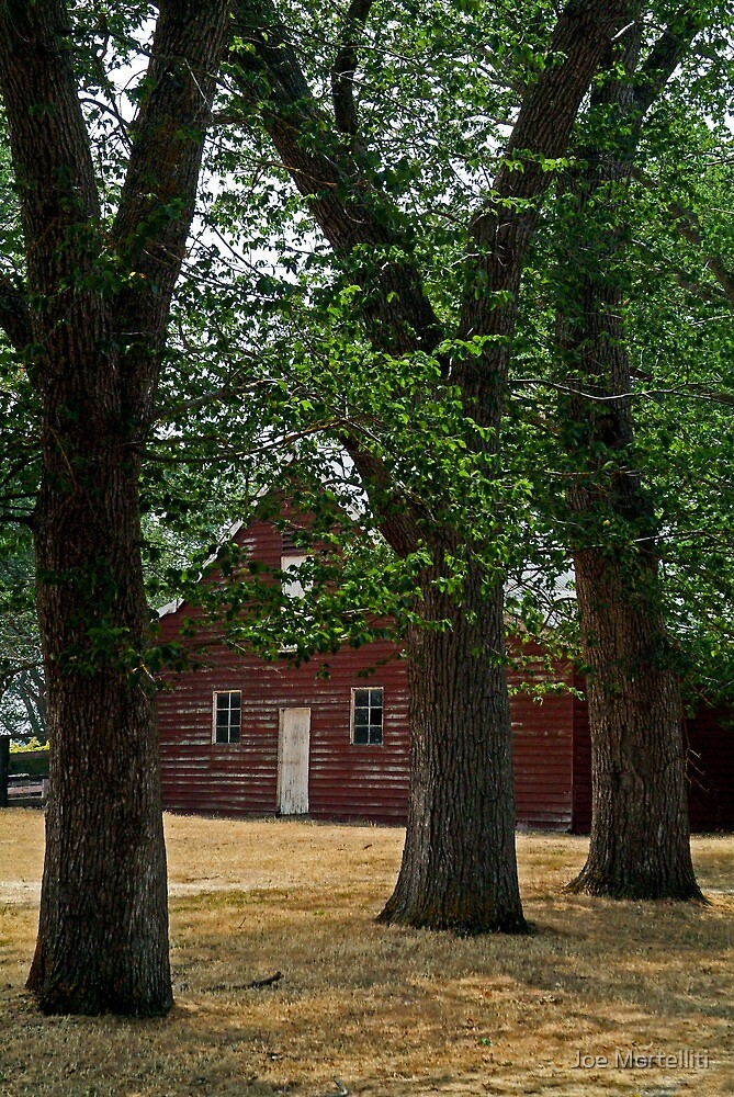 The Old Barn by Joe Mortelliti
