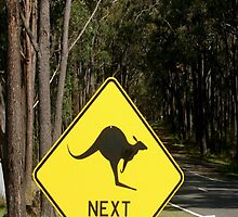 Beware of Kangaroos by Chris Chalk