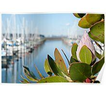 Marina View Poster