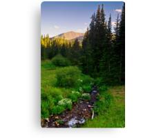 Creek Of The Evening Light Canvas Print