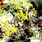 Leaves by okmondo