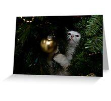 Nadia Helps at Christmastime Greeting Card
