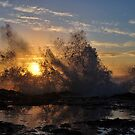 Sea Spray by Randall Scholten