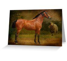 The  Race Horse. (TB X Polish Warmblood ) Greeting Card