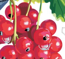 Redcurrant Sticker