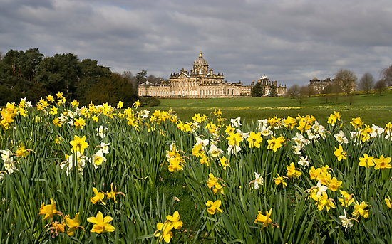 Spring at Castle Howard by Theresa Elvin