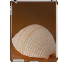 Pipe Rigate iPad Case/Skin