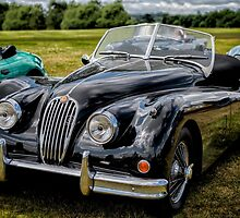 Jaguar XK140 by Adrian Evans