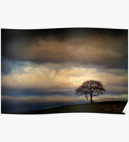 Texture Landscape Poster