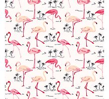 Flamingo Bird Retro Background Photographic Print
