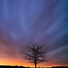 Cold Karoo Sunset by Rob  Southey