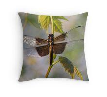 Catching Sunlight - Widow Skimmer Dragonfly Throw Pillow