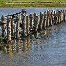 West coast of Denmark (1) by henrikn