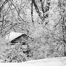 Ice Hollow by AlbertStewart