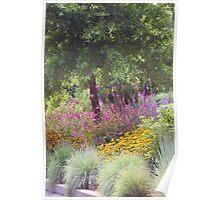 SUMMER FLOWER BEDS Poster