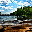 NH Landscape - Town Beach 2 by Edward Myers