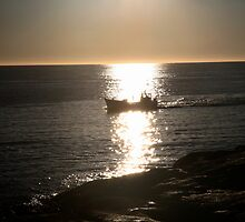 coming home. fishing boat tasmania by tim buckley | bodhiimages