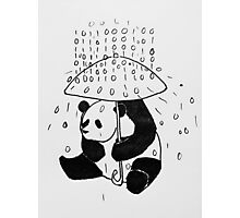 Binary panda Photographic Print