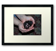 Hamster Dreams Framed Print