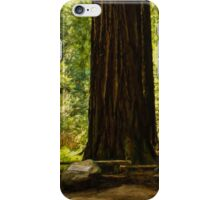 Impressions of Muir Woods, California iPhone Case/Skin
