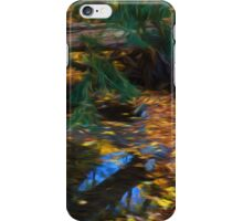 Impressions of a Little Forest Creek in the Fall iPhone Case/Skin