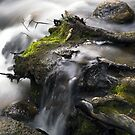 Slowed River by John  Sperry