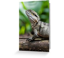 Eastern Water Dragon Greeting Card