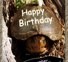 Growing Older Birthday by Terri Chandler
