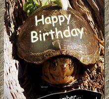Growing Older Birthday by Terri Chandler