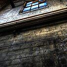 Windowpane by Matthew Jones