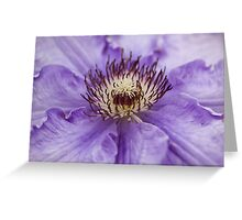 Clematis Stamens Greeting Card