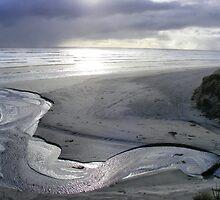 """Silver Serpent"" at Strahan's Ocean Beach by gaylene"