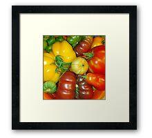 Tomatillo Framed Print