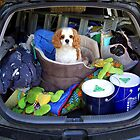 """Dont forget  to pack the dog!"" by Melanie Travis"