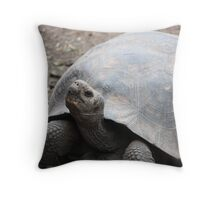 Tortoise as curious as us Throw Pillow