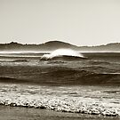 Winters Wave by Paul Manning