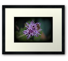 Microworld Framed Print