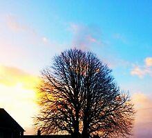 Tree at Sunrise by PixlArt