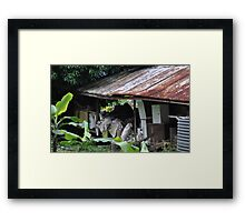 Decay & Clutter Framed Print