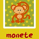 Monete by Sonia Pascual