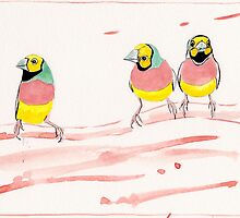 Three Pink Finches by TASHHOFER