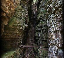 Chasm's Chasm by Tim Holmes