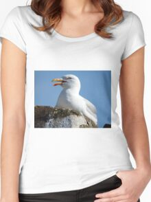 Screaming Seagull  Women's Fitted Scoop T-Shirt
